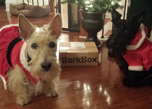 Special delivery for Mr. and Ms. Scottie Claus!